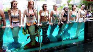 WE ARE THE MERMAIDS OF THE WORLD! ♥ Mermaids And Mermen Swimming Together In Singapore! POOL PARTY