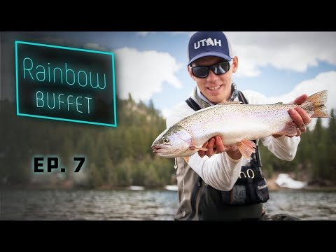 Rainbow Buffet - GIANT Stillwater Rainbow Trout Fly Fishing!