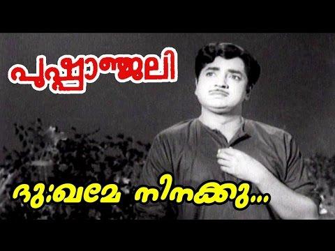 Dukhame Ninakku... | Pushpanjali | Malayalam Superhit Movie Song