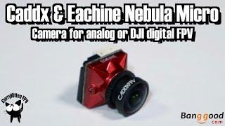 Caddx Nebula Micro Camera - both Analog and DJI Digital! Supplied by Banggood