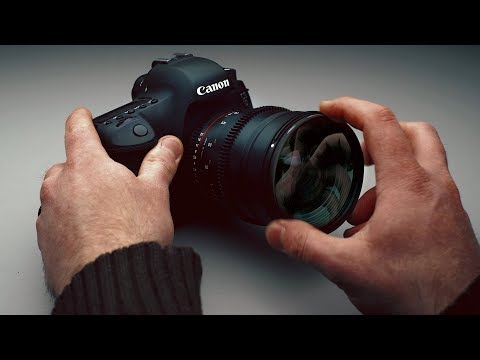 Macro Lens On A Budget: 3 Options Under $20
