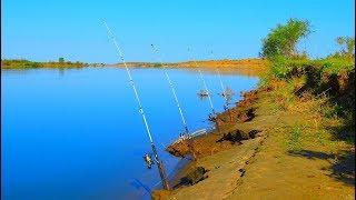 Все о рыбалке ловля карася на донку с берега