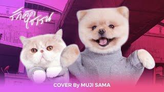 รักติดไซเรน Cover Dance by MUJI feat. MUMARU