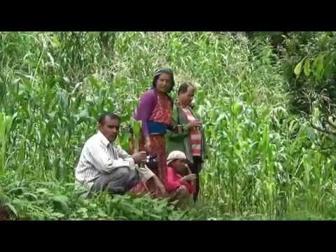 Garcinia cambogia para sa pagbaba ng timbang