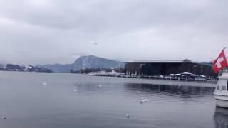 スイス発 ルツェルン湖畔を散歩【スイス情報.com】