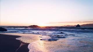 Renaldas - The Shore