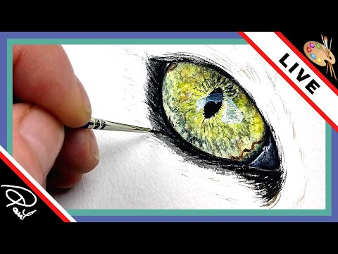 Watercolour Wildlife Painting LIVE FEED  - Painting a Cats Eye!