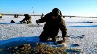 Луда уна рыбалка на севере