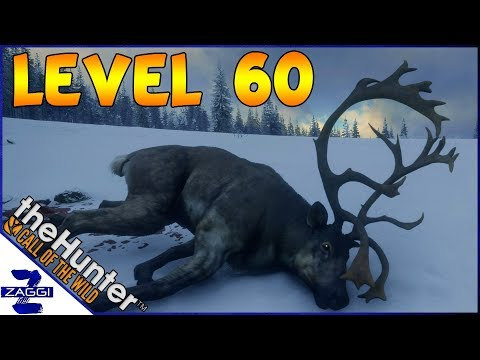 Finally Level 60 Again - TheHunter Call of the Wild