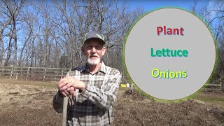 """How to Plant in my Oklahoma Deep Mulch, """"No Till"""" (Ruth Stout) garden. 3-7-2020"""