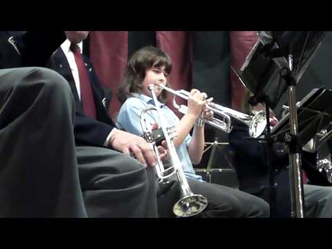 Fanfare Stevensbeek - Nieuwjaarsconcert 2011