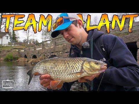 Døbelfiskeri i Sverige