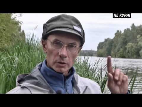 Sostegni verticali di pesca