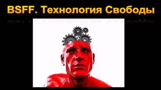 Техника BSFF. Технология Свободы. Презентация книги
