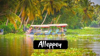 Alappuzha ( Alleppey) Kerala Travel Guide| Budget Travel