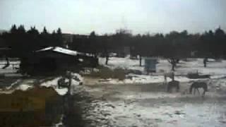 preview picture of video 'Bahnfahrt Eilenburg von Ost nach Stadtmitte'