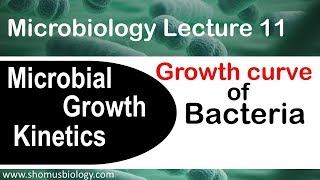 Bacterial Growth Curve Microbiology | Log Phase Lag Phase Stationary Phase In Microbial Growth