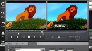 How to rip dvd to iPad video---4Videosoft DVD to iPad Converter