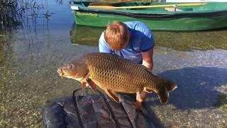 Рыбалка в австрии на реках