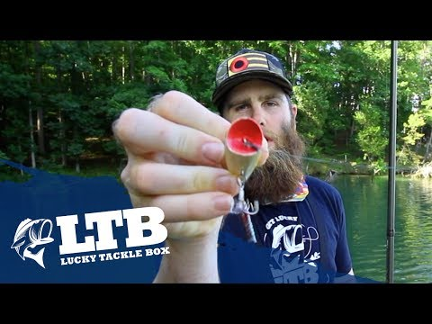 Topwater Tip #5 For Bass Fishing: How to Fish a Popper
