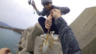 福井県でエギング-2