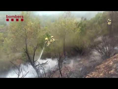Incendi forestal Òdena  (Anoia)