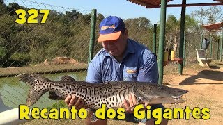 Programa Fishingtur na TV 327 - Pesqueiro Recanto dos Gigantes