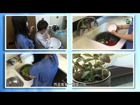 TVB YouTube頻道: 無綫電視「東張西望」‧ 節約用水