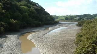 Black Muddy River - Grateful Dead