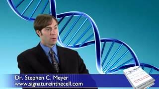 Evolutionless - Ep 20 The Origin Of Genetic Information (Chapter III)