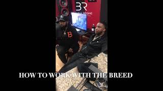#BRVCClient The Breed Talks Production, Community Impact & Chris Brown with Incline Magazine