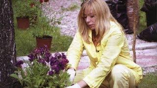 """Алена Апина в программе """"Растительная жизнь"""" - 2003"""