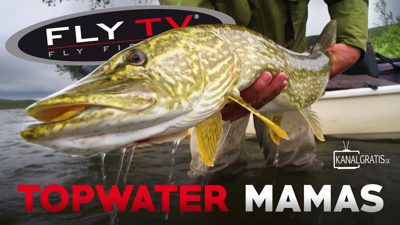 FLY TV - Topwater Mamas (Pike Fly Fishing in the Mountains)