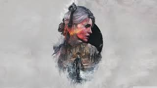 The Witcher Theme Song