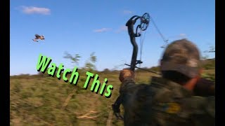 Bowhunting the Fastest Game Birds Alive. Ducks, Doves, Grouse and Parakeet
