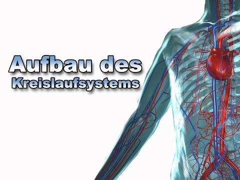 Rückenschmerzen Behandlung Ursachen