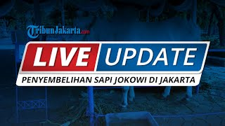 LIVE UPDATE Proses Penyembelihan Hewan Kurban Presiden Jokowi di Masjid Istiqlal Jakarta