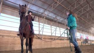 «В Активном поиске»: Конный спорт