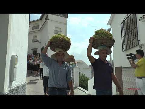Resumen Día de la Pasa de El Borge 2019