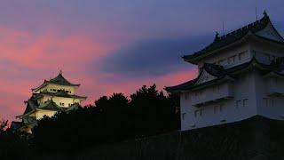 「城景観光」編 提供元:名古屋城本丸御殿