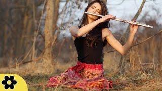 Relaxing Flute Music, Calming Music, Relaxation Music, Meditation Music, Instrumental Music, ✿2816C