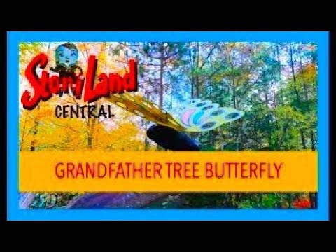Grandfather Tree Butterfly - Story Land, Glen NH
