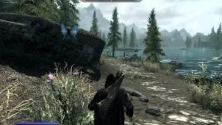 Tamriel Online. Установка и запуск мода Skyrim ONLINE CO-OP Multiplayer