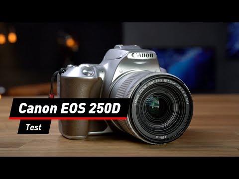 Einsteiger-Spiegelreflex: Canon EOS 250D im Test