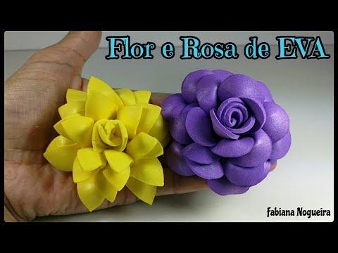 Flor e Rosa
