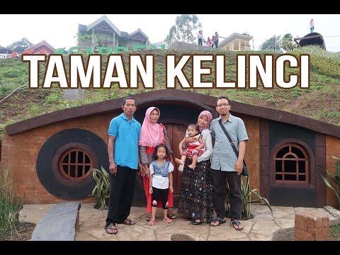 Video Taman Kelinci di Pujon Malang Tempat Wisata Baru Bak Negeri Dongeng ada Hobbit House