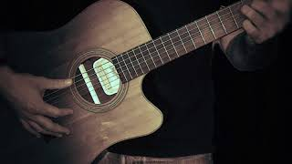 Herrenabend Acoustic Gitarre