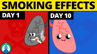 What Happens to Your Body When You Quit Smoking?
