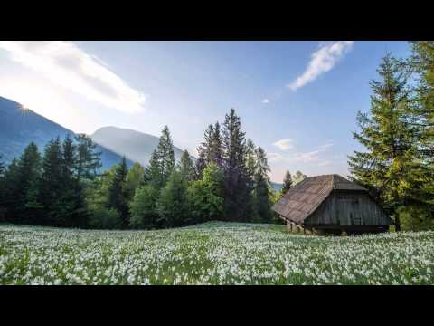 3 Hours of Relaxing Celtic Music: Harp & Flute   Meditation, Relaxation & Study