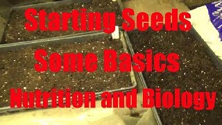 Starting Seeds In The Greenhouse Some Basics Part 1